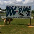 DogPark7