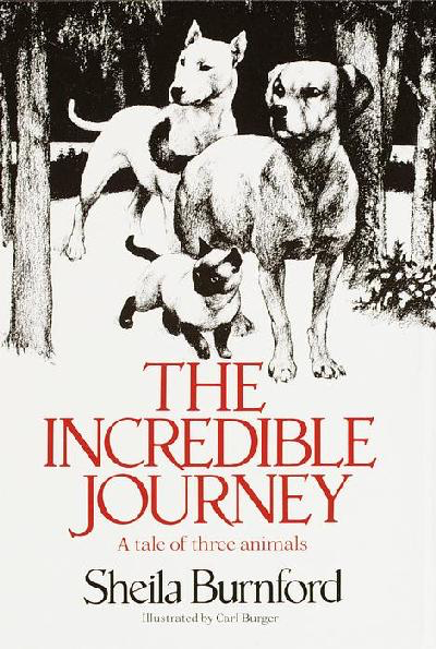 TheIncredibleJourney