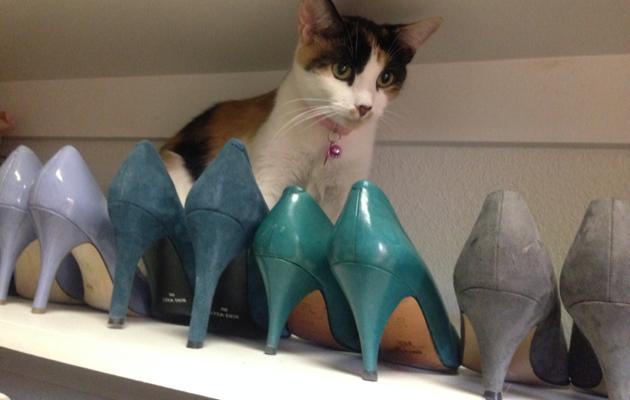 CallieShoes
