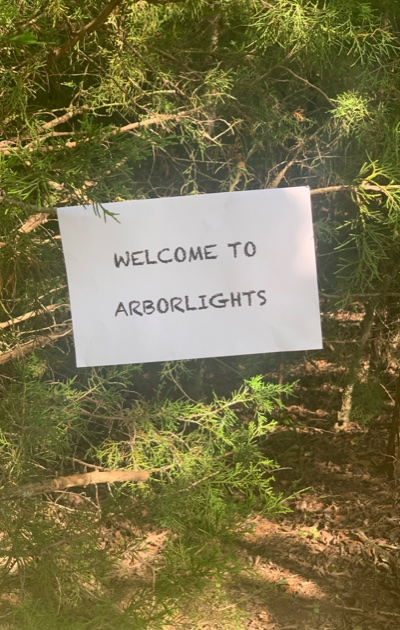 Arborlights2
