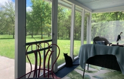 Back-Patio-Office…