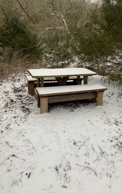 SnowD1Table
